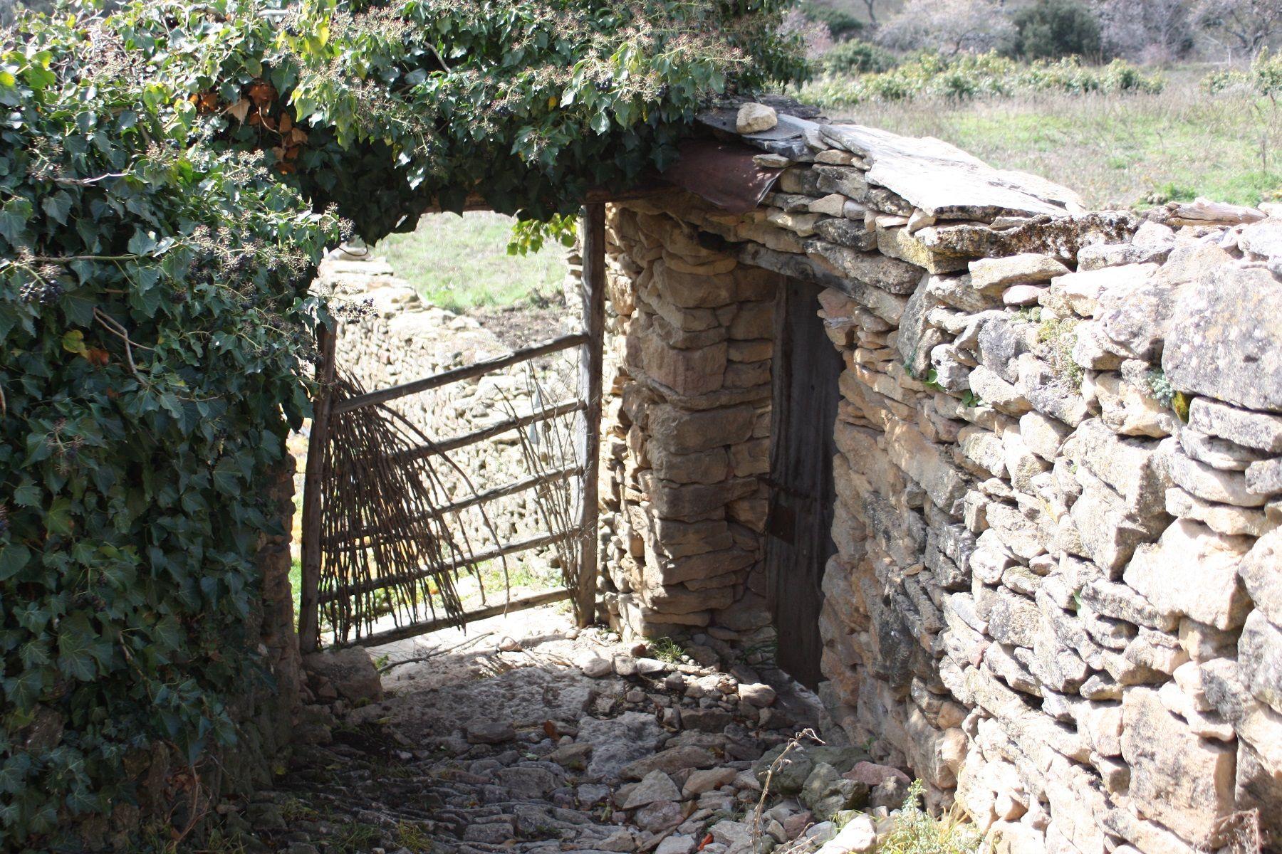 Foto: C. Benítez, archivo de la Comarca de Sobrarbe