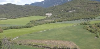 Campos del Sobrarbe. Foto: SobrarbeDigital